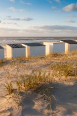 beach houses in a row along the Dutch coast