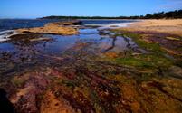 Bundeena Beach