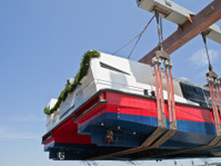 new catamaran