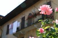 Italian house with balcony and roses