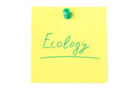 Ecology Sticky Note