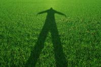 Grass shadow - zombie