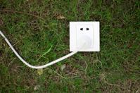 Socket on grassland