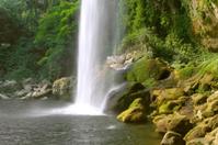 Cascada (waterfall) Misol Ha, Chiapas, Mexico