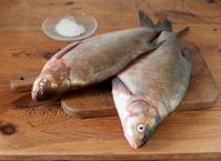 fresh bream fish at kitchen