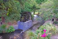 Water mill wheel