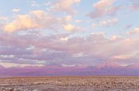 Chaxa Lagoon Atacama Desert Chile