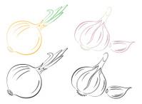 garlic onion