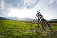 Stocking hay