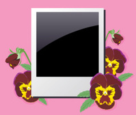 Photo frame in the violets