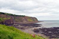 The cliffs at Robin hoods bay