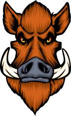 cartoon boars head