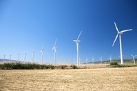 big group of wind power mills