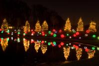 Christmas Light Reflection