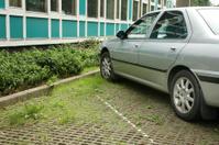 Permeable Car Park paving