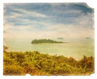 Grunge tropical postcard