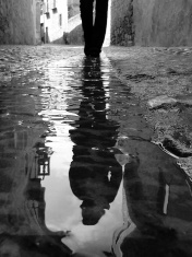 Wet Cobbled Road