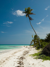 Empty Mexican Beach