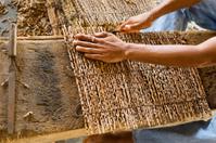 Amazon artisan