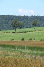 Landscape in Franche Comté, France