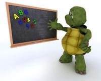 tortoise with school chalk board