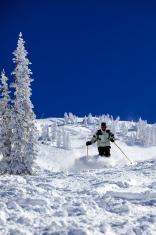Man skiing, Snowbird, Utah, USA