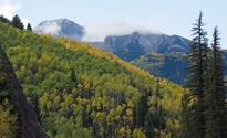 Autumn colors in Colorado