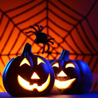 Halloween pumpkin with spider web and copy space