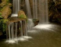 Aboretum Waterfall