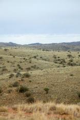 Australian rural landscape near Silverton