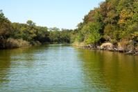 Ropotamo river, Bulgaria