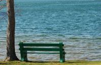 Lonley Park Bench