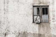 Grungy old window