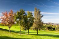 Autumn golf course
