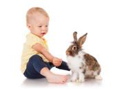 Little girl feeding rabbits cabbage