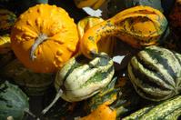 Pumpkins at the marketplace