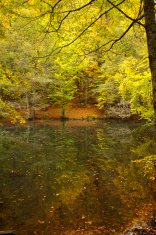 autumn in the Seven Lakes