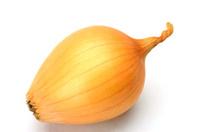petit onion