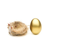 How Big Is Your Nest Egg?