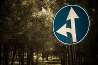 Go Straight or Left Traffic Sign