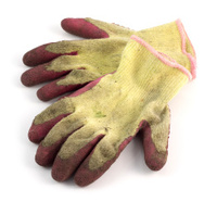 Well used ladies gardening gloves