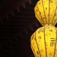 Elegant Chinese Lantern