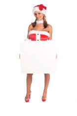 Mrs Santa Blank Sign