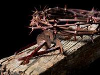 Christ. Easter holy week
