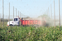 Truck spreading processed hop debris in field