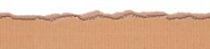 seamless torn cardboard edge
