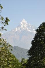 Mountain Machapuchare