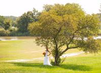 Beautiful Bride Outside
