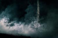 Dark foggy forest at night