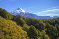 Vulcan Lanin, Patagonia, Argentina